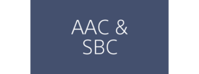 SONY AAC & SBC.png