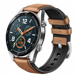 Huawei Watch GT Brown 55023210