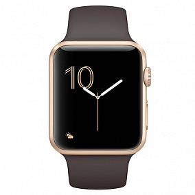 Apple Watch Series1 42mm Gold Aluminium Case with Cocoa Sport Band MNNN2RU/A